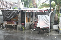 cart(0.0), rickshaw(1.0), vehicle(1.0), transport(1.0), rain(1.0),