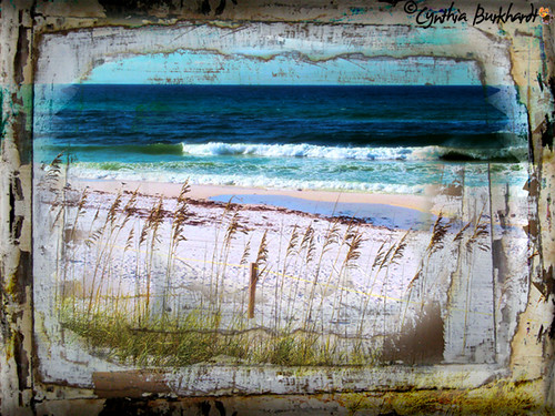 Destin Henderson Beach on Driftwood by CynDB
