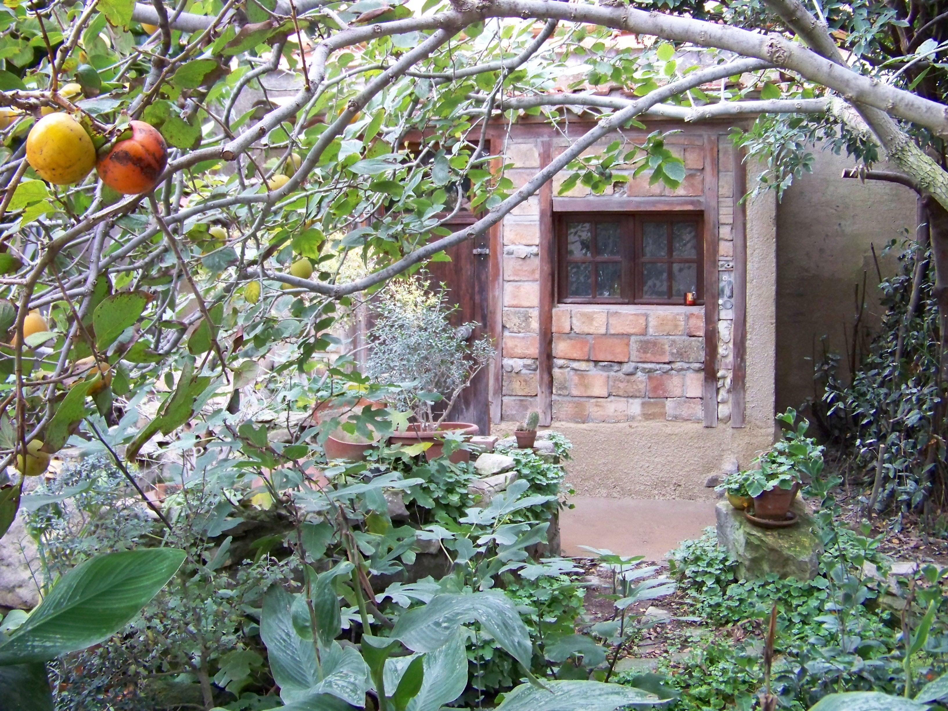 Au fond du jardin une cabane outils by thetallsam l for Cabane outil jardin