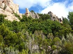 Sentier de Capeddu : sous l'aiguille 726m à l'E du col de Capeddu
