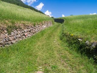 Kaiserweg (Via Raetia) bei Saubach