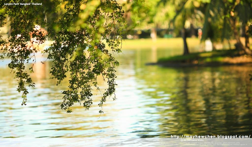Lanpini Park 07