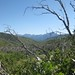 Small photo of Dead Trees, Mountains, and Enoch