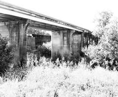 Railroad & Hwy 6 Bridges over Navasota River, Texas 0905101647BW