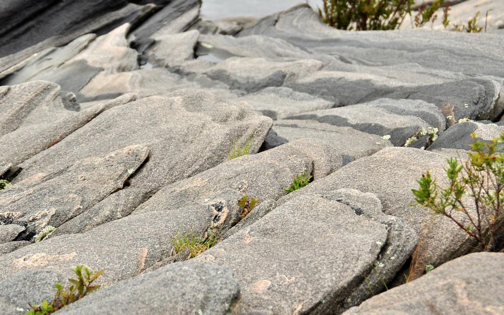 Camping at Killbear: rock erosion