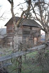 Wes Howard House