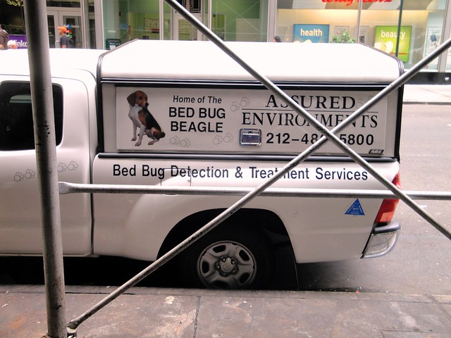 Bed Bug Detection Dogs For Sale