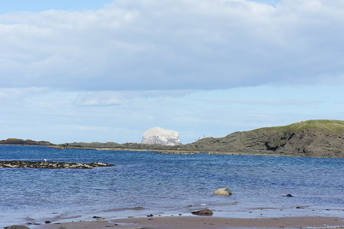 The very white Bass Rock from North Berwick beach