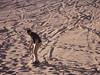 Sandboarding in San Pedro de Atacama