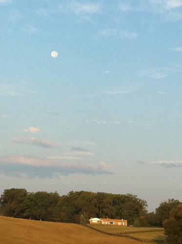 Good morning Moon!