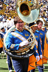 festival(0.0), sports(0.0), athlete(0.0), sousaphone(1.0), marching band(1.0), musician(1.0),