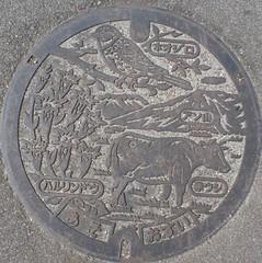 Japan2010-12-001