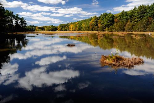 autumn reflection nature water estuary tidepool seawater adamspoint greatbay hintsoffall