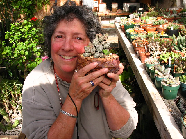 Margot Hammer with an Adromischus
