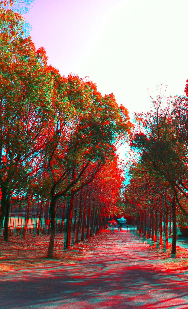 3D Camera Photo anaglyph 稲美町にて 2