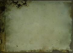 mold, wall, plaster,