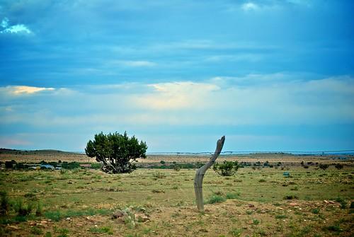 blue sky landscape bush colorado fance barbedwire plains barbwire wideopenspaces ★★★★ fremontcounty