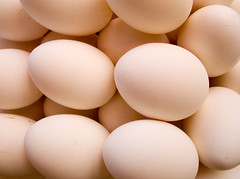 egg white(0.0), egg(1.0), food(1.0), egg(1.0), close-up(1.0),