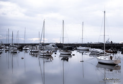 Yachts at Roxas Blvd