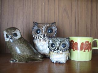 Owl Loot