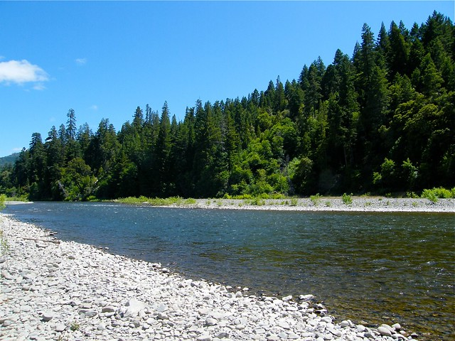 Eel River at Benbow Lake