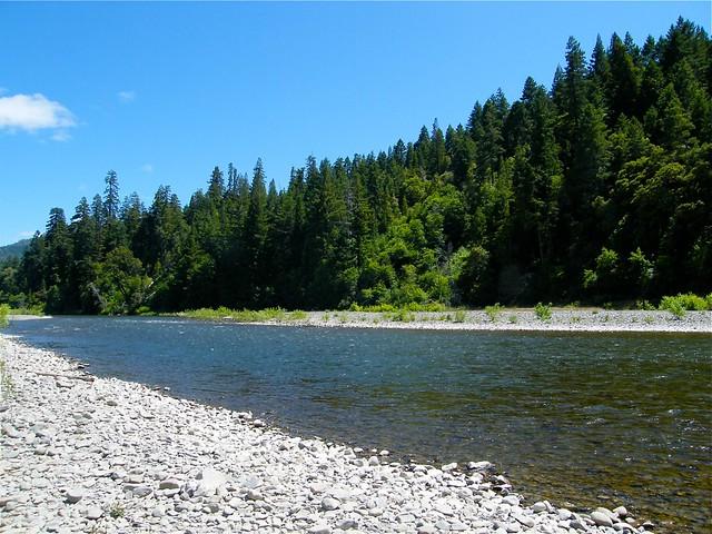 Eel River at Benbow Lake