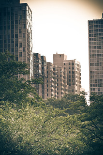 Lincoln Park High Rises \\ Mid-Summer 8513