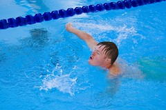 swimming pool(1.0), individual sports(1.0), swimming(1.0), sports(1.0), recreation(1.0), outdoor recreation(1.0), leisure(1.0), azure(1.0), swimmer(1.0), water sport(1.0), freestyle swimming(1.0),