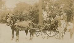 A photo of Adolph Barkan (1845-1935), Sir William MacEwen  (1848-1924), Stanley Stillman (1861-1935) in a horse drawn carriage
