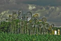 The Windmills of Merna