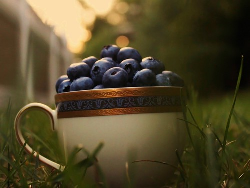 Blueberries (explored)