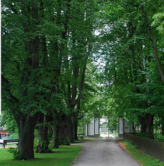 Attersee Klimt 1b2
