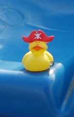 The Adventures of Ducky