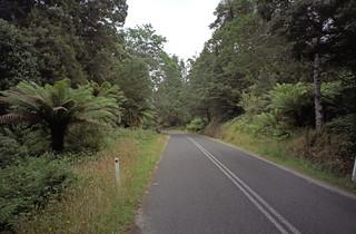 Tasmanian Roadscape