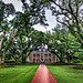 Oak Alley Plantation by Kay Gaensler