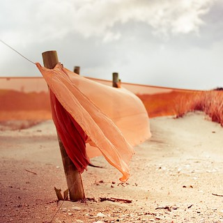 Wind / beach / orange