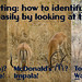 Wildlife spotting: how to identify some ruminants