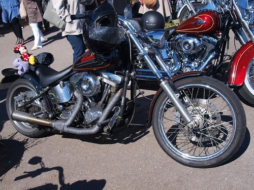 Harley Davidson Custom Motorbikes