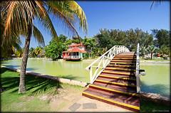 Pedestrian bridge - Parque Josone Park