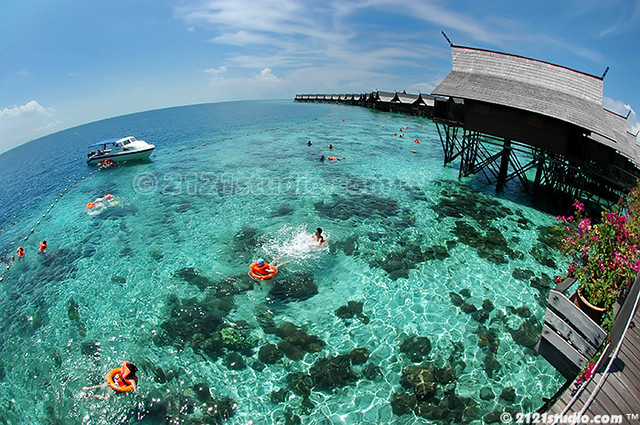 Mermaid heaven kapalai island - Kapalai sipadan dive resort ...