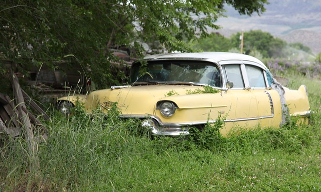 1956 Cadillac (