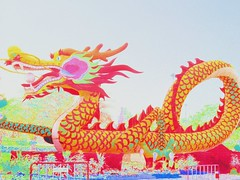 dragon, illustration, chinese new year,