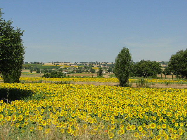 Umbria, Perusa, Tiber, Apenino, Trasimeno