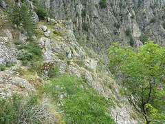 Sentier de montée vers Caprunale : bel ouvrage