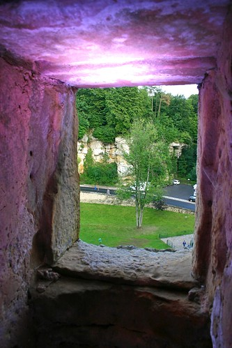 plants castle window wall view luxembourg beaufort