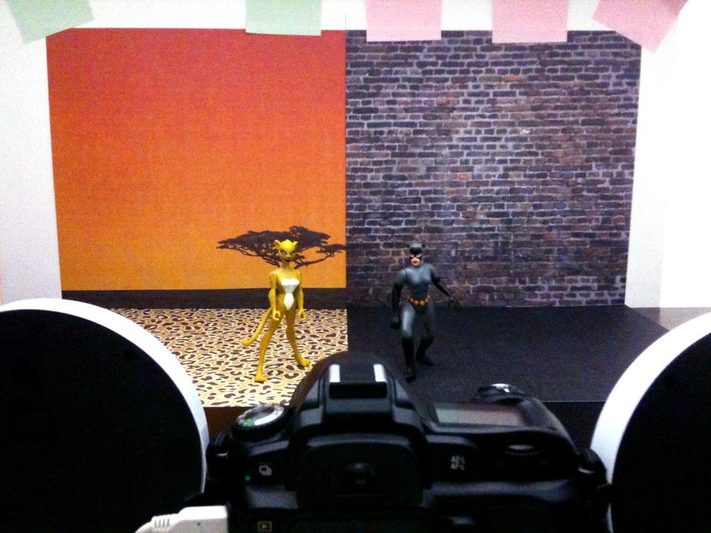Cheetah vs. Catwoman Setup