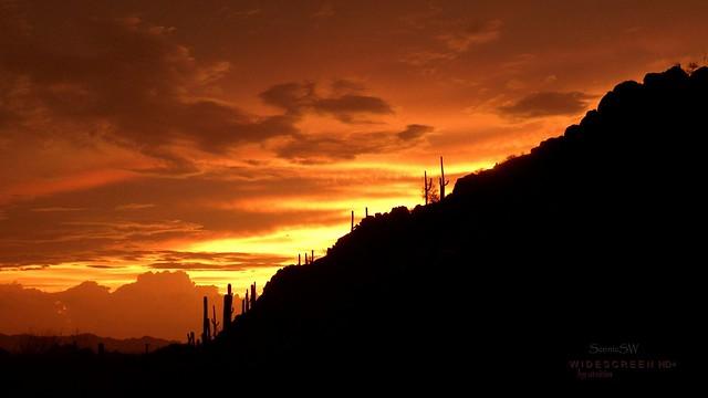Desert Skyscape II