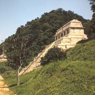 Palenque 1987