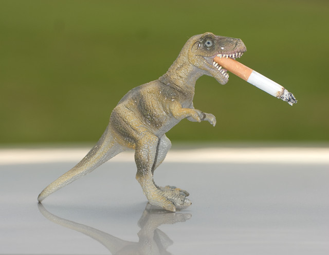 why dinosaurs became extinct Why did the dinosaurs die out climate change this is what happened to the dinosaurs and many other species that became extinct at this time gradual change.