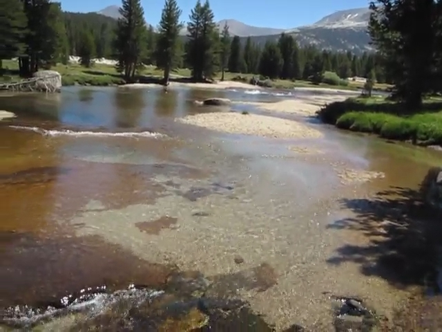 3130 Video of the Tuolumne River in Lyell Canyon